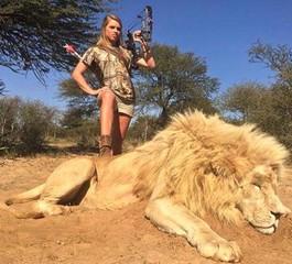 絶滅寸前の野生動物狩りが問題に