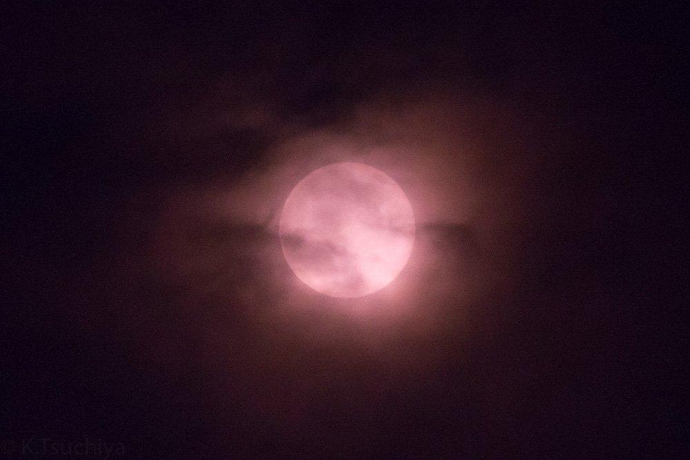 「ストロベリームーン」の画像検索結果
